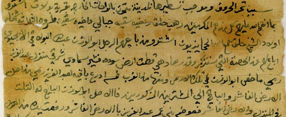 文書アーカイブ:エジプト西部砂漠・オアシス地方の歴史文書